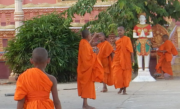 Buddhist novices and monks