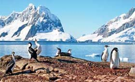 One-in-a-lifetime voyages to Antarctica