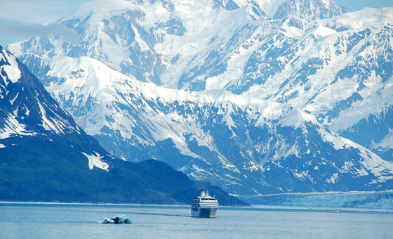 See glaciers and mountains from your ship
