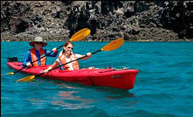 Our expedition crusies offer kayak trips to get up close