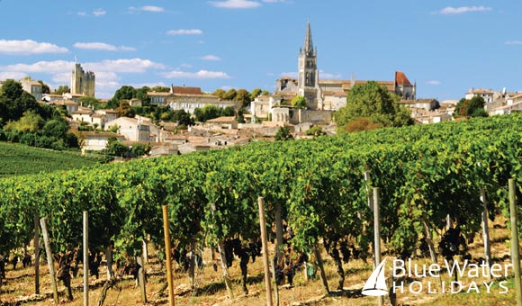 Sample regional wines on a cruise through the vineyards and châteaux of Bordeaux