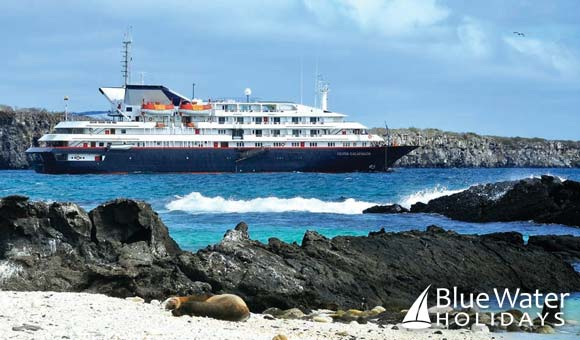 Discover the diverse wildlife of the beautiful Galapagos Islands