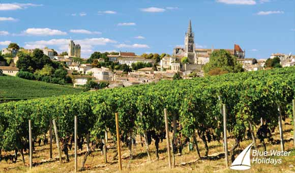 Explore the magnificent vineyards and chateaux of Bordeaux