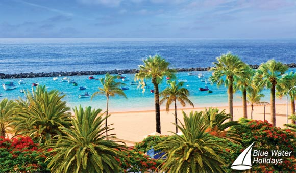 Christmas and New Year in the Canaries