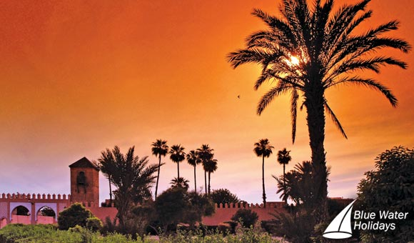 Vibrant Marrakesh and Morocco