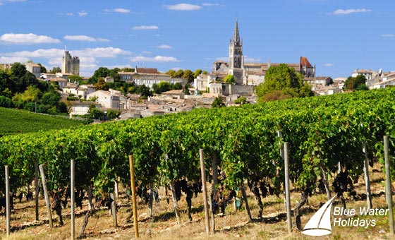 See the vineyards and chateaux of Bordeaux