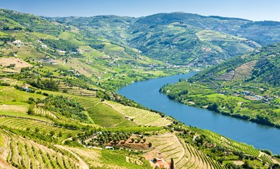 The beautiful River Douro